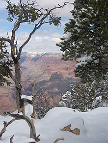 Grand Canyon snow scene